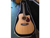 Beautiful 12 string guitar and case