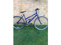 Ladies Rayleigh Max Bike Superb Condition