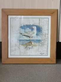 Lovely vintage style framed seagull picture £3