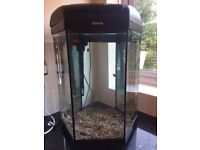 Aquael fully equipped aquarium fish tank, 12 fish and maintenance products