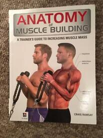 Anatomy of muscle building book