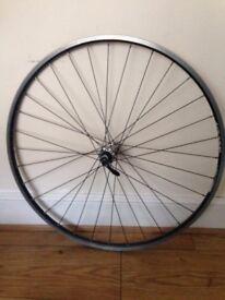 "Bike wheel 25"""