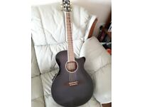 Ibanez AEG24ii electro acoustic guitar price drop £220