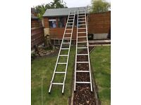 YOUNGMAN DOUBLE SECTION 4.53M 2 SECTION DIY 100 extension ladder