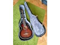 Hohner Acoustic bass guitar