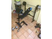 Weights bench with weights and bars