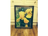 AUTHENTIC FLOWER OIL PAINTING - (EXCELLENT CONDITION)