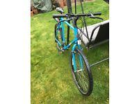 Relaigh 501 mountain bike