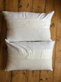 2 cushions with white velvet covers