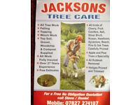 Jacksons tree & lawn care