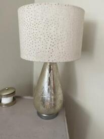 Silver glass lamp and lampshade