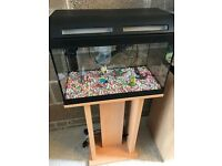 Over 1.5 ft fish tank 50 cm full set up with stand filter heater gravel ornament light all work