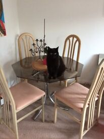 Glass and chrome dining table (cat not included)