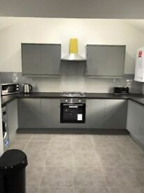 4 bedroom 2 bath student apartment for academic year 2018/19 Ashfield- by smithdown Rd - bills inc