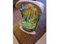 Fisher Price baby swing & seat