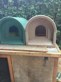2 plastic kennels