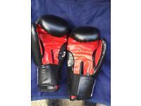 Everlast boxing punch bag.