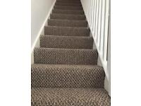 4 months old stair carpet