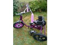 Quest 88 carousel tricycle