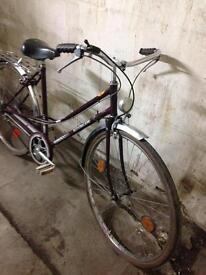 Ladies bike retro