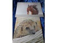 Animal canvases