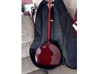 5 string bluegrass banjo