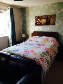 Flatshare bed