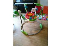Jumperoo - fisher price rain forest