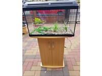 One month old fish tank with cabinet stand, decorations, gravel and brand new filter