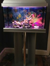 Fish tank with. Iteam