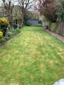 GARDEN SERVICES, CLEANING SERVICES, MOWING, STREAMING, TREAMING, PATIO, PRUNNING & GRASS CUTTING