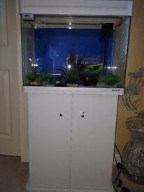 70ltr Boyu Elegance Aquarium £150 ono