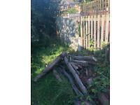 Free fire wood logs