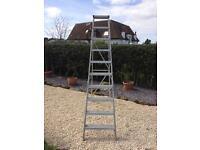 Youngman class 1 10 tread industrial ladder
