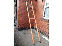 scaffolder's ladder 10 rung