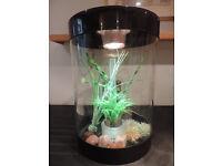 35L BiUbe Fish Tank with Halogen Light & accessories