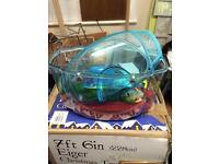 Blue plastic fish tank