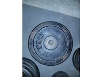 2x15kg metal weights