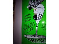 Signed Mike vallely skateboard deck