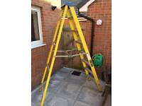 Fibre Glass Ladders 7 + 1 Tread
