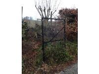 Free large fence and gates.