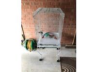 Large parrot white cage ideal for African Grey, Senegal size bird