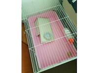 Indoor Rabbit Cage 100 and Litter Tray