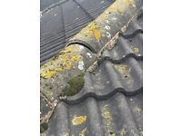 All roofing and guttering repair. Free estimates call Colin 07715825526 all work guaranteed