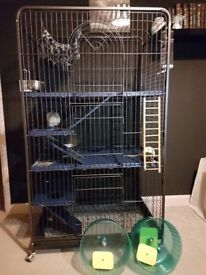 Due to unforseen circumstances a pair of rats and the cage must be sold