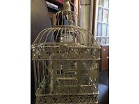 Antique Birdcages