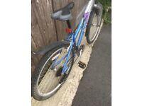 Raleigh Free Ride Lx ladies bicycle
