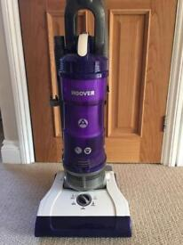 Hoover Spirit Reach Pet Hoover in perfect working order and great condition