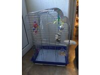 Good size budgie cage