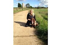 Experienced Dog Boarding Service